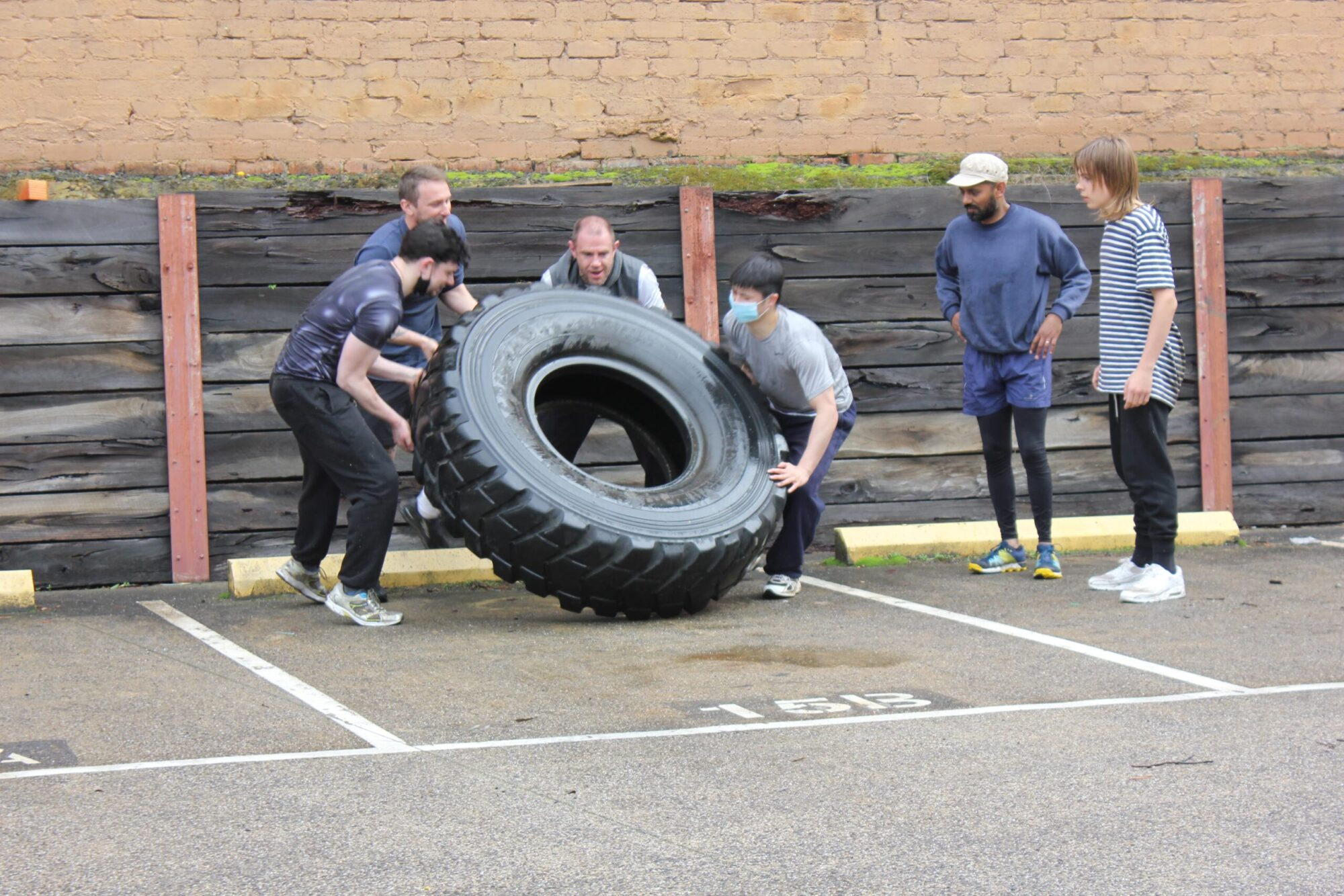 The Bear Training system